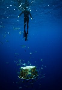 The Vortex Swim Crew marine debris ocean microplastics debris
