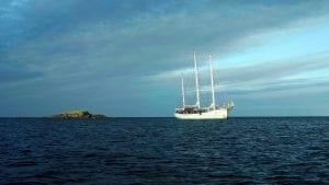 Rara Avis tall ship schooner sailing ocean
