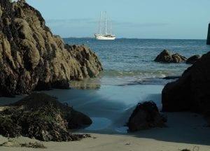 Rara Avis tall ship schooner sailing beach