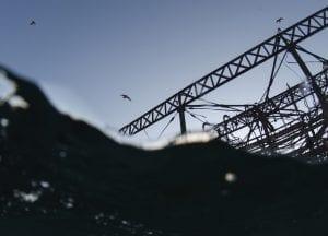 Brighton West Pier wreck Will Appleyard UK sea gulls