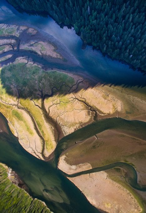 Bloodwater Tavish Campbell wild salmon British Columbia Canada