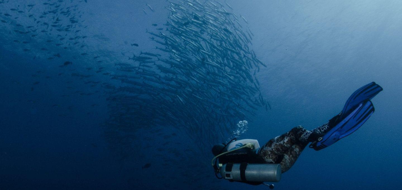 Indonesia plastic pollution Banda diving