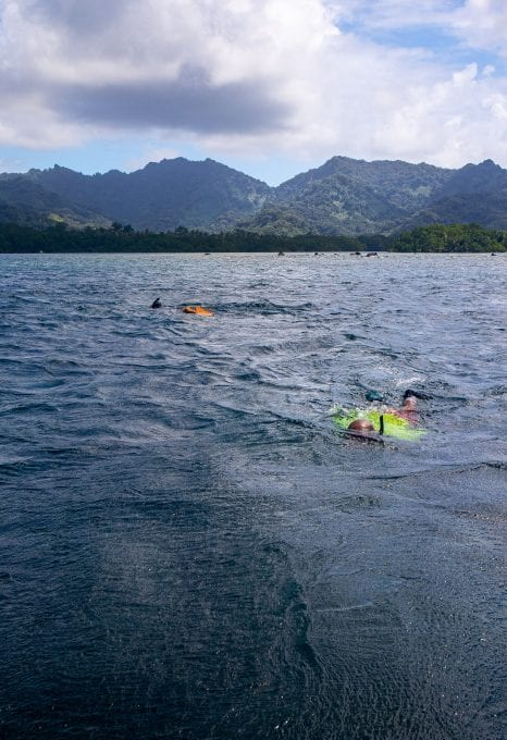 Crown of Thorns snorkelling Kosrae