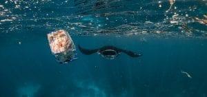manta ray Bali ocean plastic