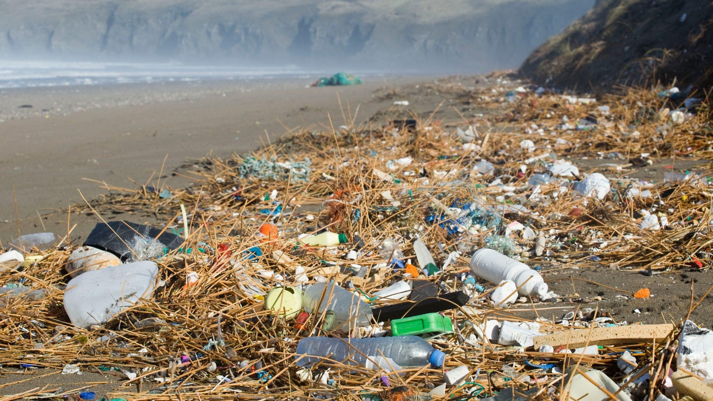 SAS digital beach clean plastic pollution