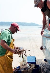 Jersey fishermen beach crab