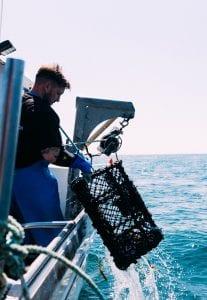 Jersey fishermen crabs