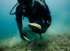 Jersey fishermen scallop diving