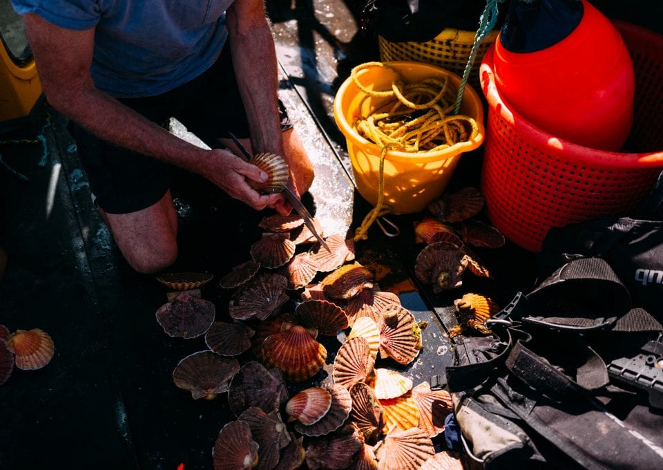 Jersey fishermen fishing