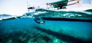 Project Hiu Shark Girl Madison underwater photo