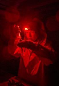 polar night arctic light pollution marine organisms scientific research