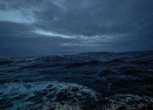 polar night arctic light pollution marine organisms high seas