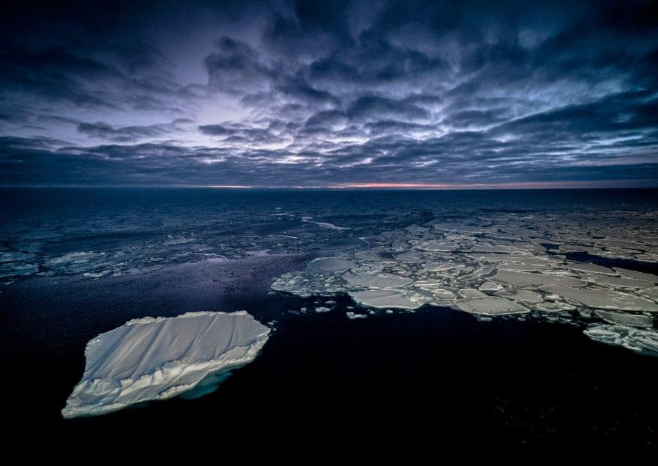 polar night arctic light pollution marine organisms Arctic ocean