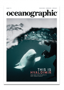 Issue 13, Oceanographic Magazine