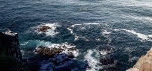 Olly Hicks Arksen Foundation ocean
