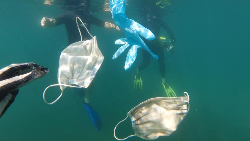 covid waste Opération Mer Propre