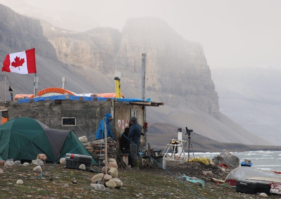 Narwhal camp