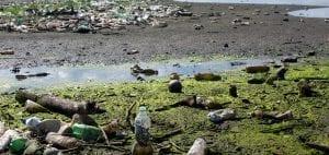4ocean Guatemala ocean plastic