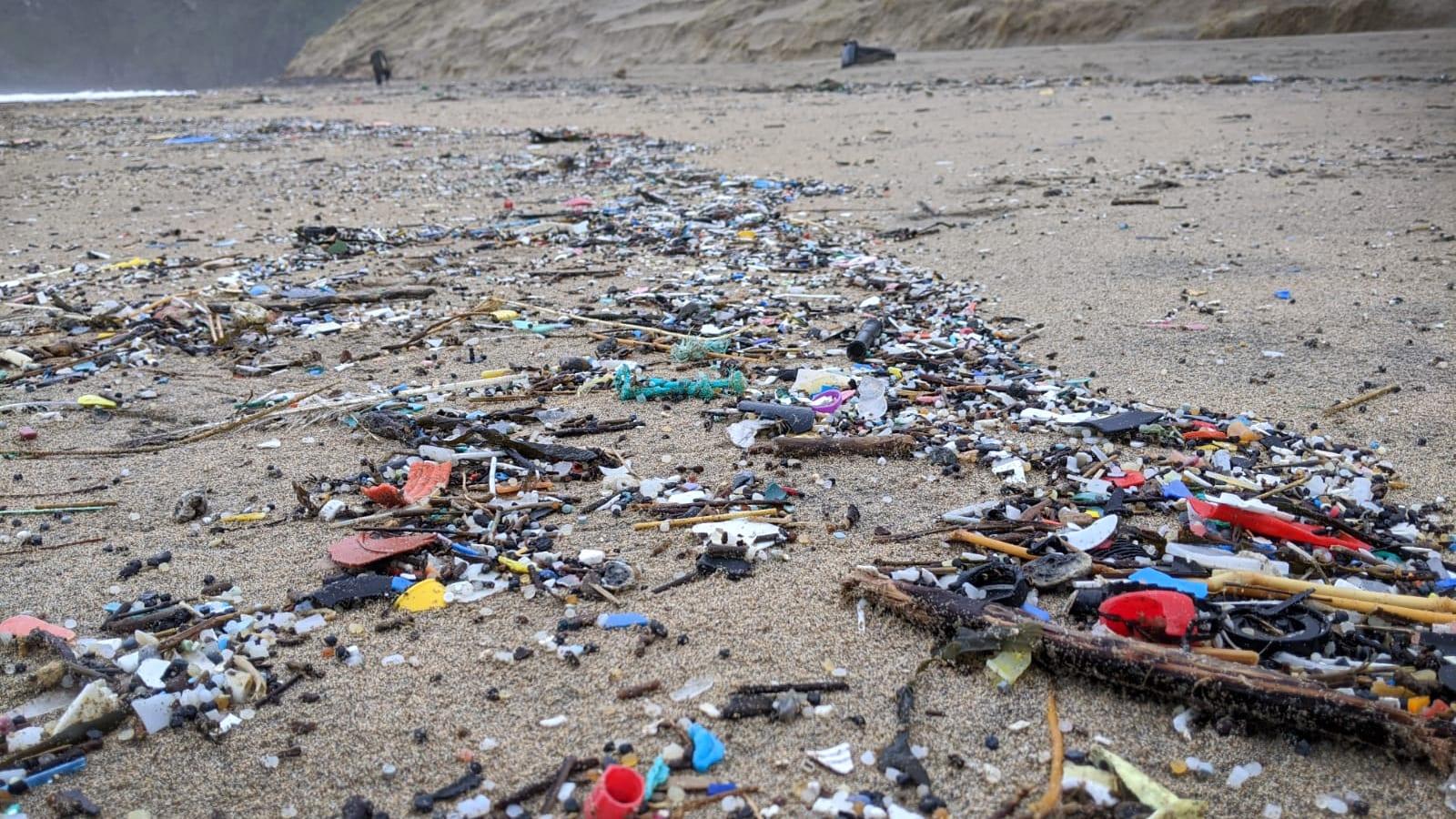 #ReturnToOffender Surfers Against Sewage The Dirty Dozen