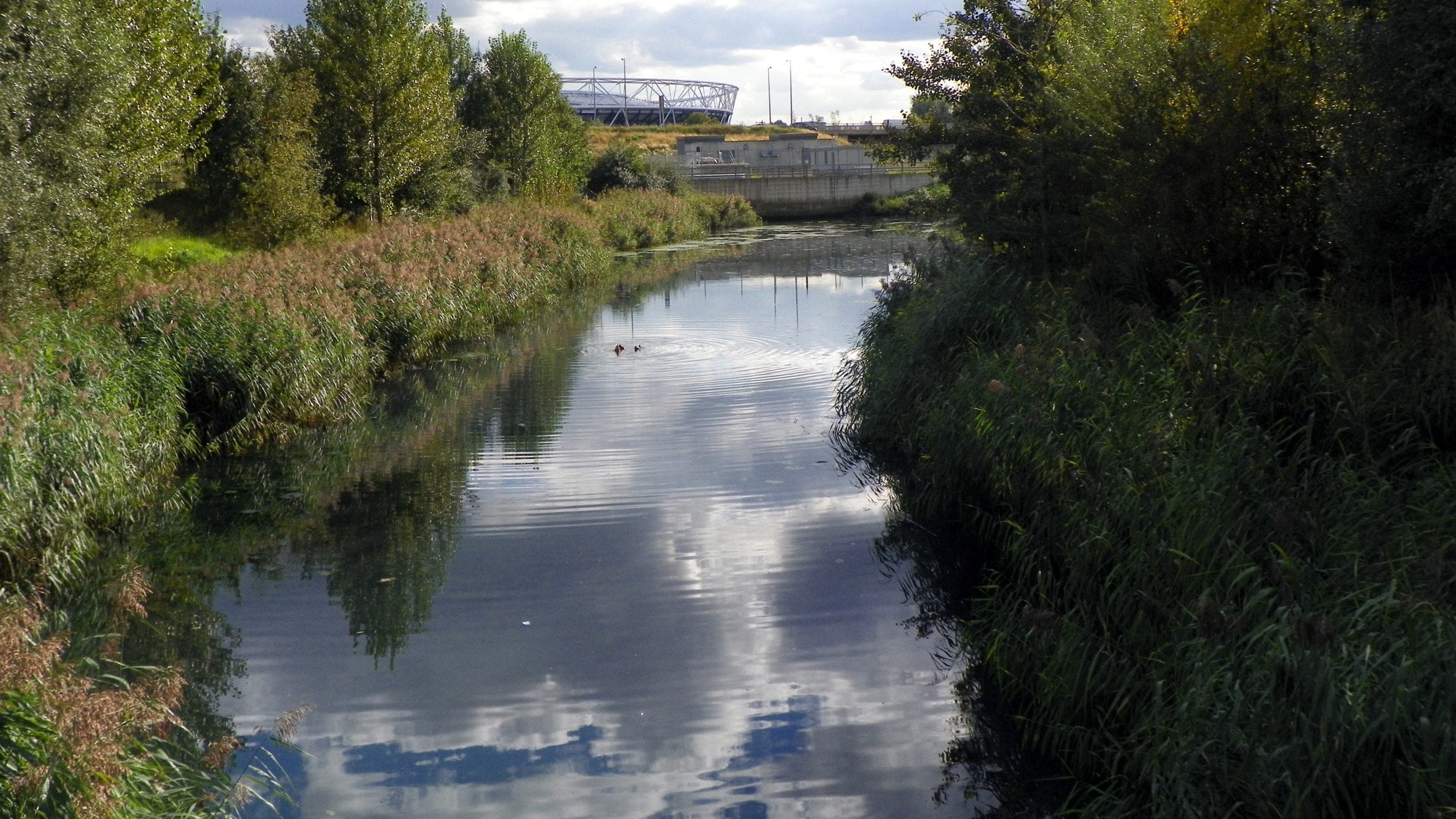 It has been revealed by The Guardian that raw sewage flowed from a Thames Water overflow pipe into an environmental wetland within the London Olympic Park 91 times over 1,026 hours during 2019.