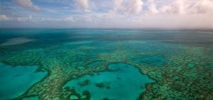 Great Barrier Reef Legacy Coral Biobank GBR