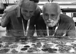 Great Barrier Reef Legacy Coral Biobank Lab