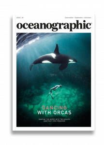 Oceanographic Magazine, Issue 09, Dancing with orcas