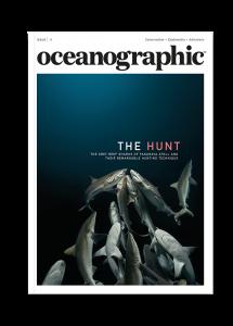 Oceanographic Magazine, Issue 11, The hunt