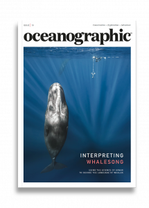 Oceanographic Magazine, Issue 10, Interpreting whalesong