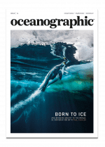 Issue 14 cover, Oceanographic Magazine, Paul Nicklen, penguin