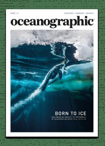 Issue 14 cover, Oceanographic Magazine, Paul Nicklen, penguin