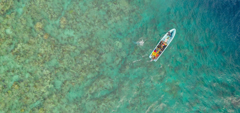 The Great Sea Reef Fiji WWF drone