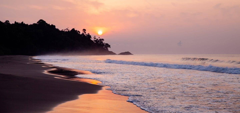 Leatherback turtle project sunset sunrise