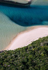 shark net shark culling Australia drone