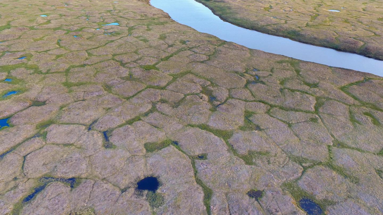 Alaska permafrost study