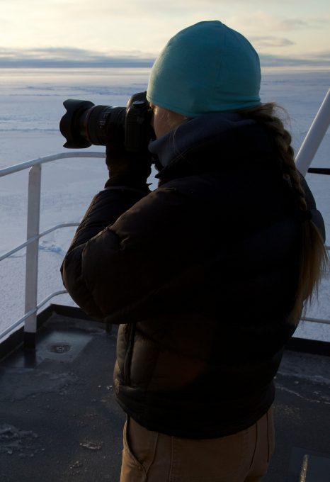 Physty sperm whale Dominica Gaelin Rosenwaks Arctic