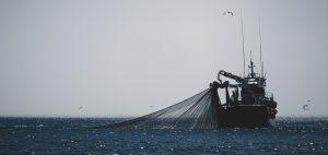Lou Luddington sailing trawlers