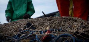 Shark fishing Republic of Congo TRAFFIC net