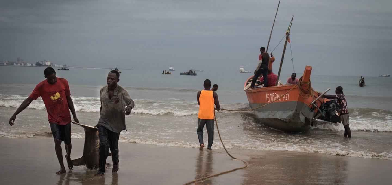 Shark fishing Republic of Congo TRAFFIC boats