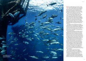 Issue 16, Oceanographic Magazine, Australia