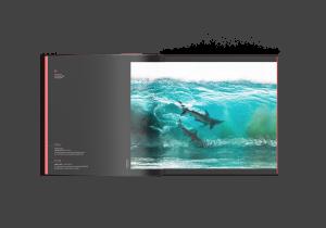Surfing sharks, Australia, Sean Scott, Ocean Photography Awards