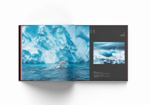 Anatarctic swim, Olle Nordell, Lewis Pugh, Ocean Photography Awards