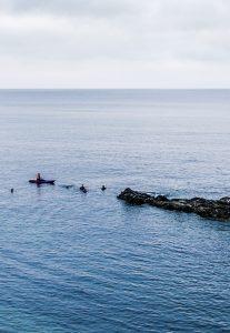 wild swimming cornwall group