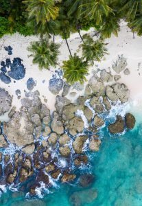 Bangkaru Island turtles drone