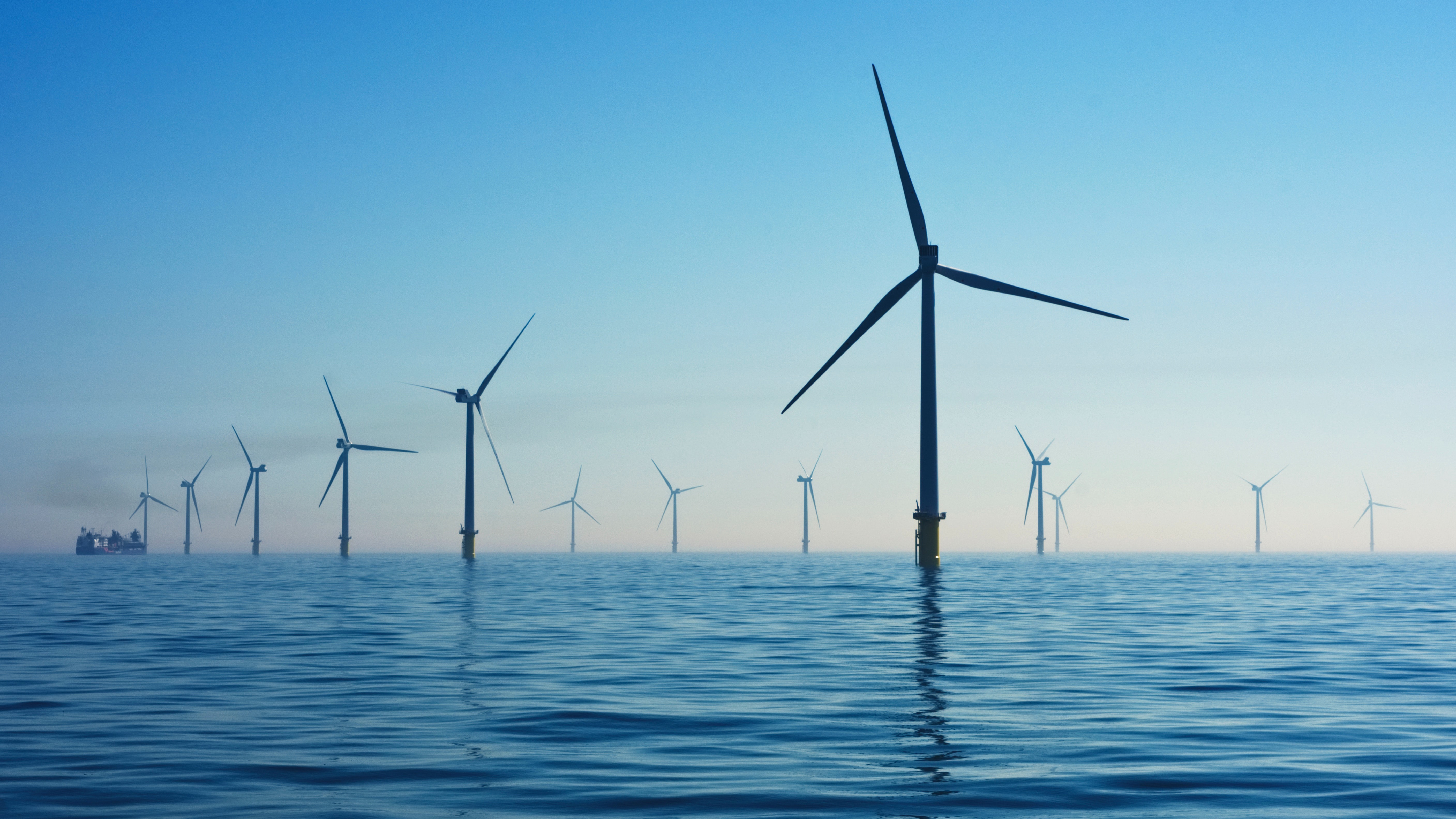 wind farm site