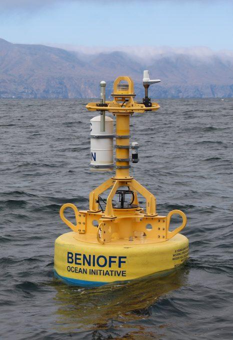 Whale safe ship strikes Santa Barbara Channel Benioff Ocean Initiative
