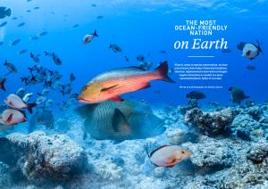 Palau, Oceanographic Magazine, Issue 17
