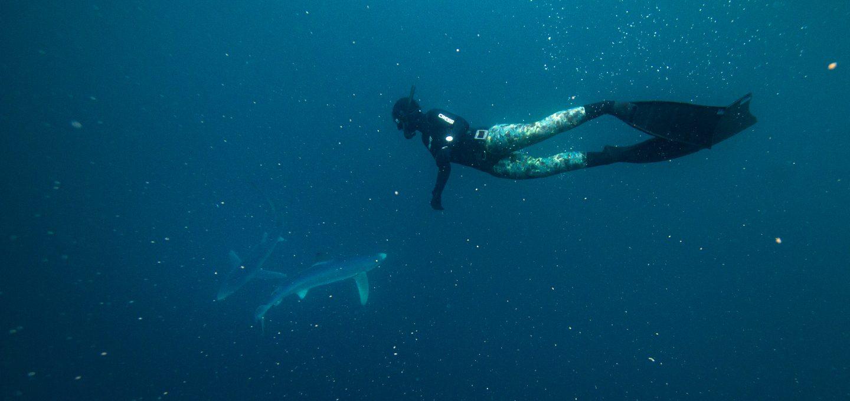 Celtic Deep Pembrokeshire diving