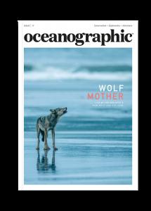 Oceanographic Magazine, Issue 17, Wolf mother