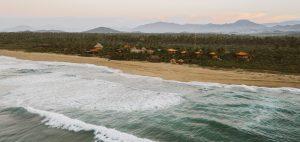 turtle nesting beach